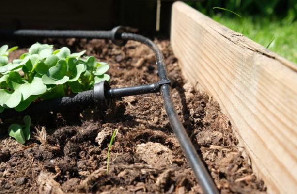 Automatiskt droppbevattningssystem från GreenLine. EADS är ett droppbevattningssystem som vattnar åt dig i odlingsbädd, rabatter, växthus och hela din trädgård,. Läs mer här www.greenline.eu