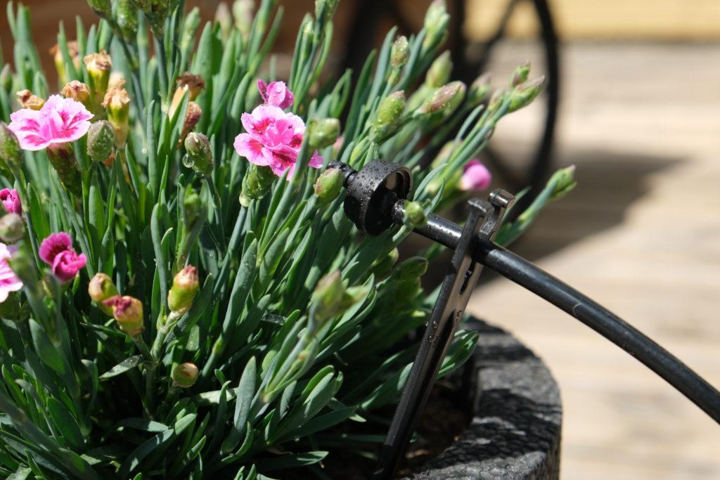 Automatiskt droppbevattningssystem från GreenLine. EADS droppbevattningssystem vattnar åt dig i krukor, rabatter, växthus och hela din trädgård,. Läs mer här www.greenline.eu