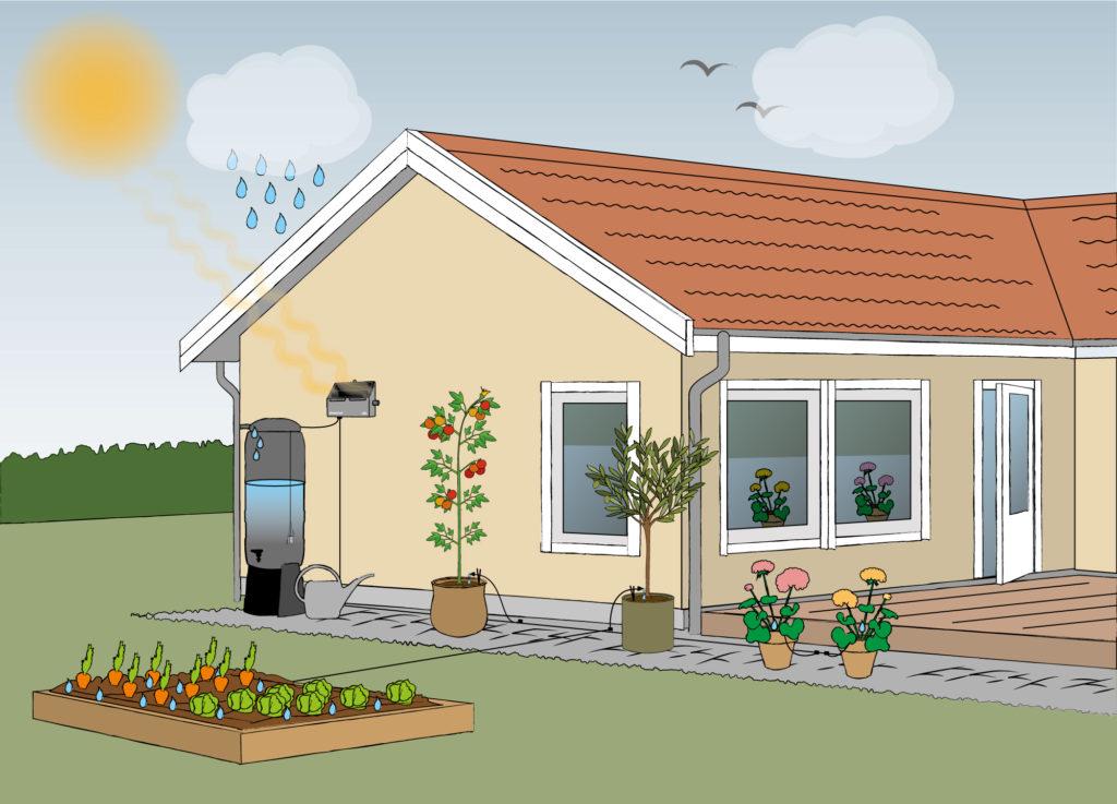 Spara på vattnet i kranen, använd automatiskt droppbevattnings systemet EADS från GreenLine. EADS vattnar åt dig i hela din trädgård, balkong mm. Läs mer här.
